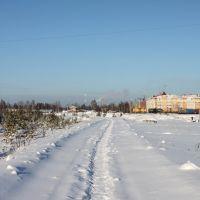 Тропа (30.01.2011), Советский