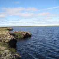 безымянное торфяное озеро, Тазовский