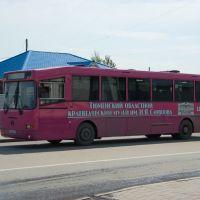 Автобус междугородный ГолАЗ-ЛиАЗ-5256R на улице С.Ремезова / The long-distance bus GolAZ-LiAZ-5256R in the S.Remezovs street (14/06/2008), Тобольск