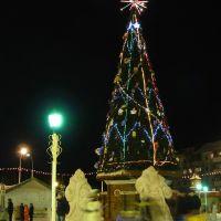 Городская елка, Урай