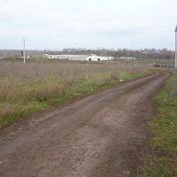 Ферма., Алнаши