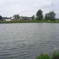 Пруд, Завьялово