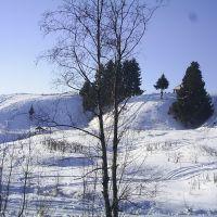 Пугачевский лог зимой, Завьялово