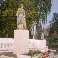 Памятник неизвестному солдату, Игра