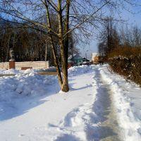 Path, Игра