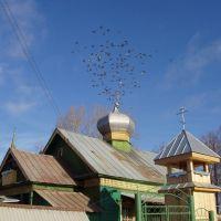 Kambarka wooden Orthodox church [Fall 2005], Камбарка