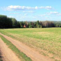 Вид на Святой ключ близ Аскерово, Киясово