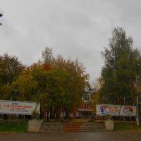 Деревья, Красногорское