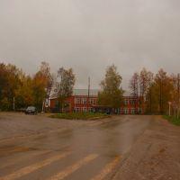 Пешеходный переход, Красногорское