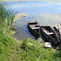 Пруд на речке Сюмсинка, Сюмси
