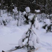 Лыжник, Устинов