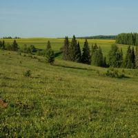 Эрестем поля/вид на юго-запад, Устинов