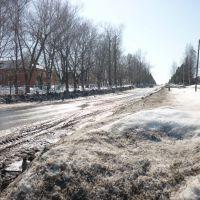 улица Ленина, Шаркан