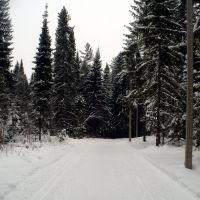 Лыжная трасса, Шаркан