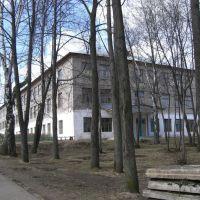 Якшур-Бодьинская средняя школа, Якшур-Бодья