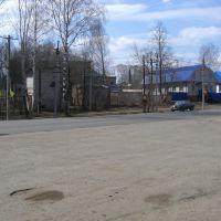 улица Пушиной, Якшур-Бодья