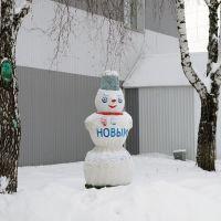 Новогодний снеговик, Базарный Сызган