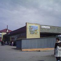 жд вокзал р.п.Вешкайма, Вешкайма