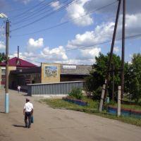 Вокзал в Вешкайме, Вешкайма