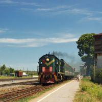 Пригородный поезд Ульяновск - Инза отправляется со станции Вешкайма, Вешкайма