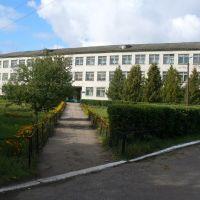 Школа №2, Вешкайма