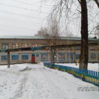 Детский сад Берёзка с заднего вида), Вешкайма