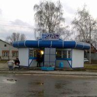 На пути в Самару, Димитровград