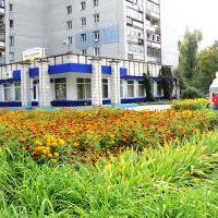 Центральная библиотека, 22.09.2012 г., Димитровград