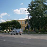 Здание Агролицея, ул. Прониной, 19, Димитровград, Димитровград