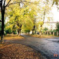 Инза, Диатомовый комбинат, улица Менделеева, вид от остановки, 2002 год, Инза