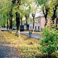 Инза, Диатомовый комбинат, вид на улицу Ломоносова, 2002 год, Инза