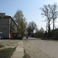 Улица Ленинская, Майна