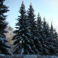 Зима., Майна