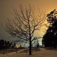 Поздний вечер, зима., Новая Малыкла
