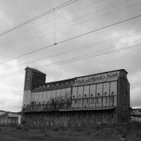 элеватор, Новоспасское