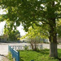 Площадь на ул.Свердлова Радищево Ульяновская обл., Радищево