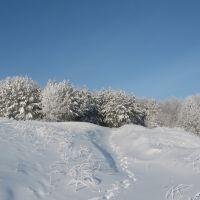 Околица, Сурское