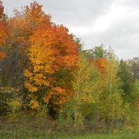 Осень, Сурское