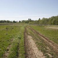 Грунтовая дорога Большое Каринское-Струнино_3, Дарьинское