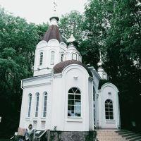 Церковь Божьей Матери «Живоносный источник», Калмыково