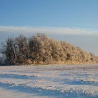 Winter evening (Зимний вечер), Калмыково