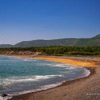 Сельдевая икра на берегу, Биракан