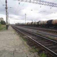 Станция Волочаевка-2, Вид на юг, Волочаевка Вторая