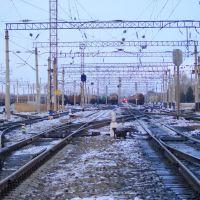 Вид с переезда в сторону вокзала п. Волочаевка-2, Волочаевка Вторая