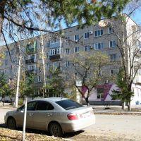 Улица Коммунистическая, Вяземский