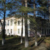 Средняя школа № 1, Вяземский