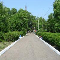 Городской парк, Вяземский