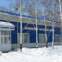 Офис Энергосбыт Дальневосточной энергетической компании (бывший городской бассейн), Вяземский