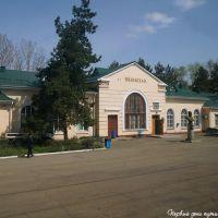 Станция Вяземская, Хабаровский край. / Station Viazemskaya. Khabarovsk territory., Вяземский