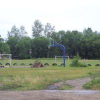 Стадион Школы, Ленинское